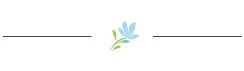 SCG-Skin-flower-divider copy